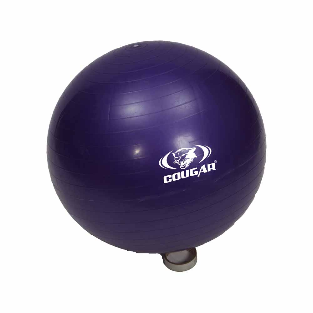 Gym Ball'
