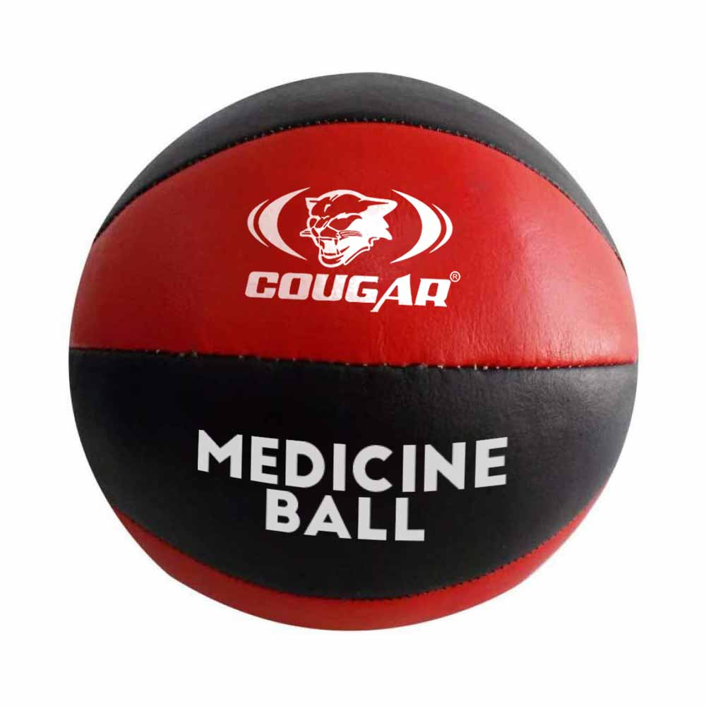 Leather Medicine Ball'