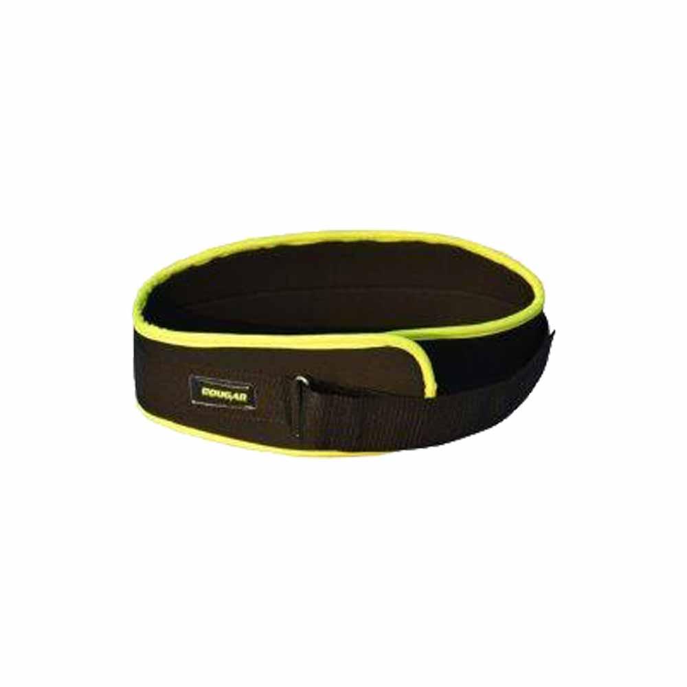 Rafter Weight Lifting Belt'